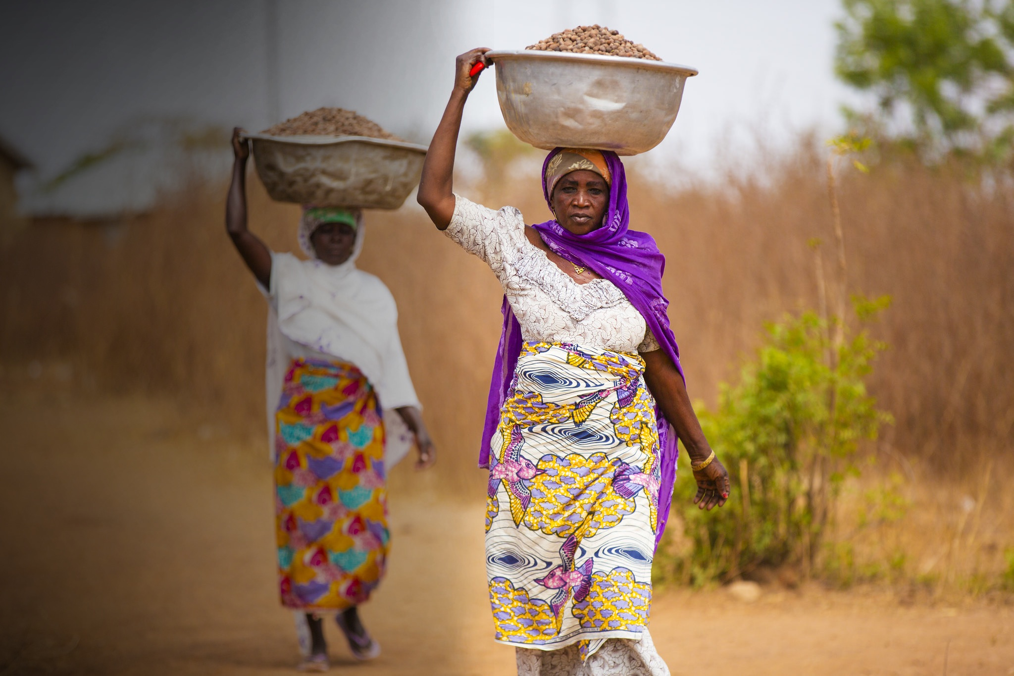 Women Carrying Shea nuts
